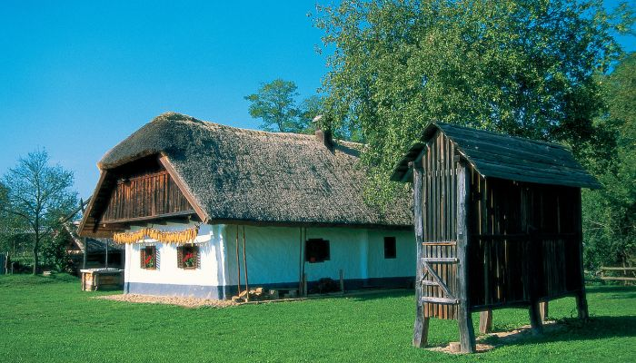 Typical Prekmurje farmstead with corn drying structure
