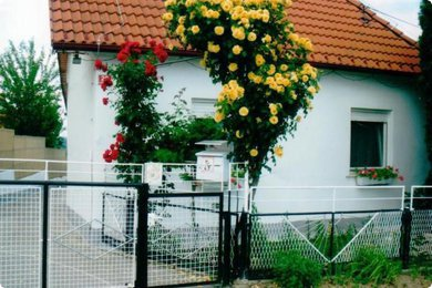 Lovely holiday or permanent home for sale in Pečarovci