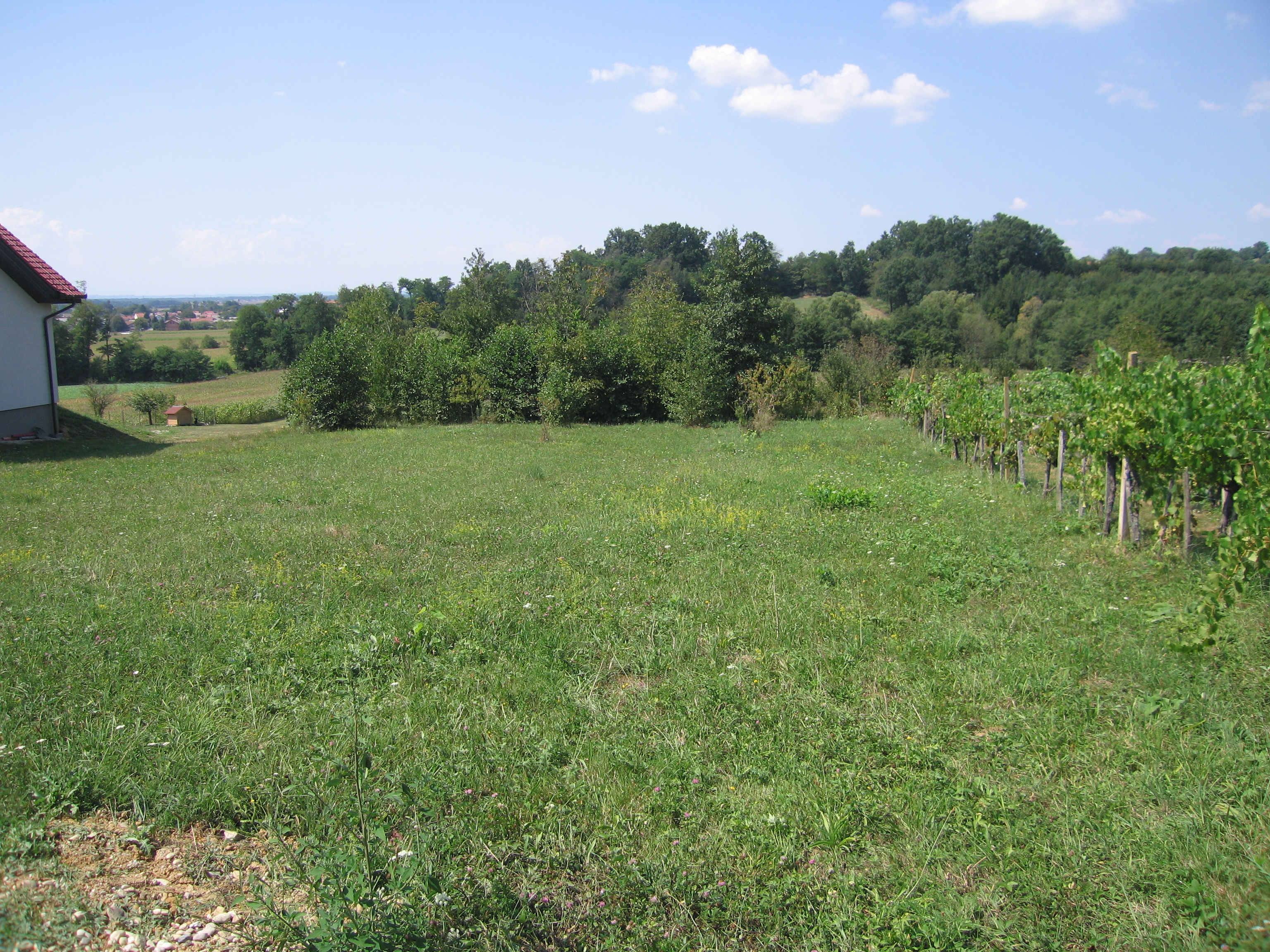 Building plot for sale in the Filovci area